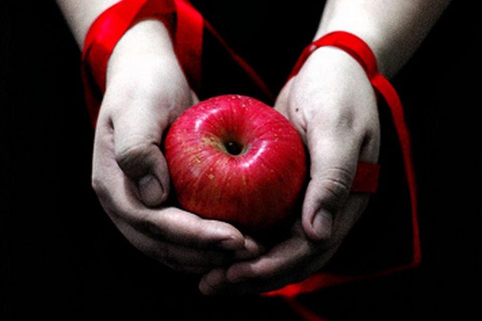 Stephenie Meyer Twilight demotivational