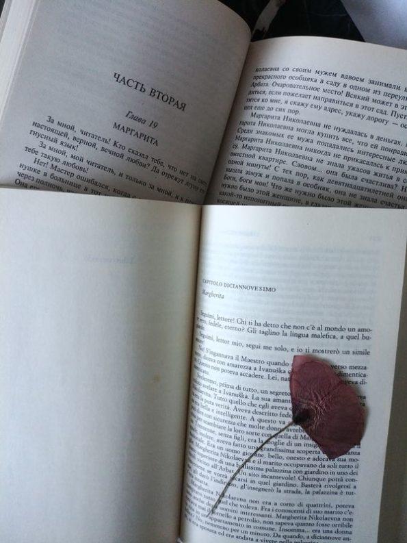 """Capito 19 de """"Il Maestro e Margherita"""", dedicato a Margarita. Incipit in italiano e russo."""