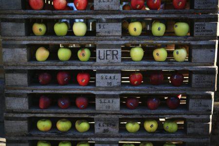 Pomaria 2019: festa delle mele a Livo, in Trentino